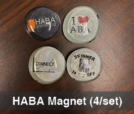 a square graphic representing Magnets (set of 4)