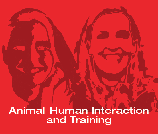 a square graphic representing ABAI Webinar: Applied Behavior Analysis With Animals: What Practitioners With Humans and Animals Can Learn From Each Other